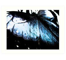 Luminescent Wings Art Print
