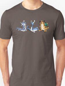 Dratini Dragonair Dragonite T-Shirt