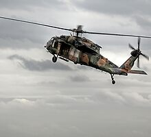 Army A25-222 - Sikorsky S-70A/UH-60 Blackhawk by Cecily McCarthy