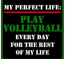 My Perfect Life: Play Volleyball by cmmei