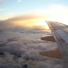 In Flight by IAIO