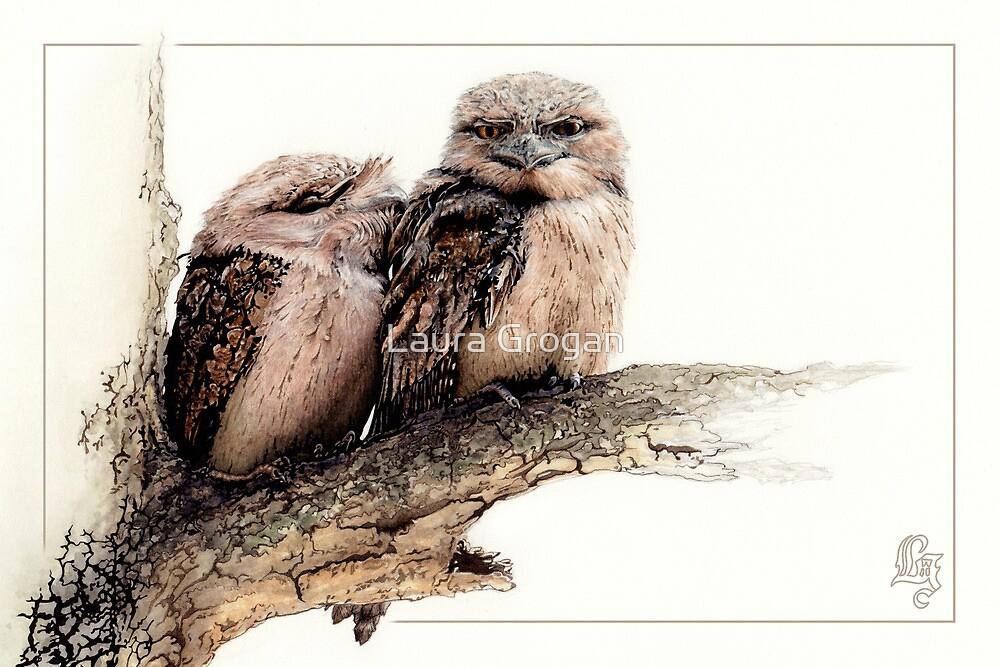 Tawny frogmouth card (Podargus strigoides) by Laura Grogan