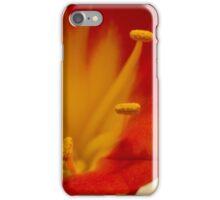 Orange Clivia Lily - Macro iPhone Case/Skin