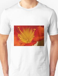 Orange Clivia Lily - Macro Unisex T-Shirt