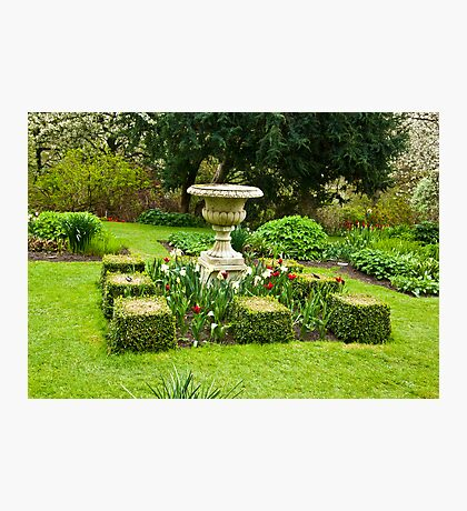 The Garden - Constable Burton Photographic Print