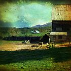 Days on the farm by John Rivera
