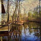 Peaceful by John Rivera