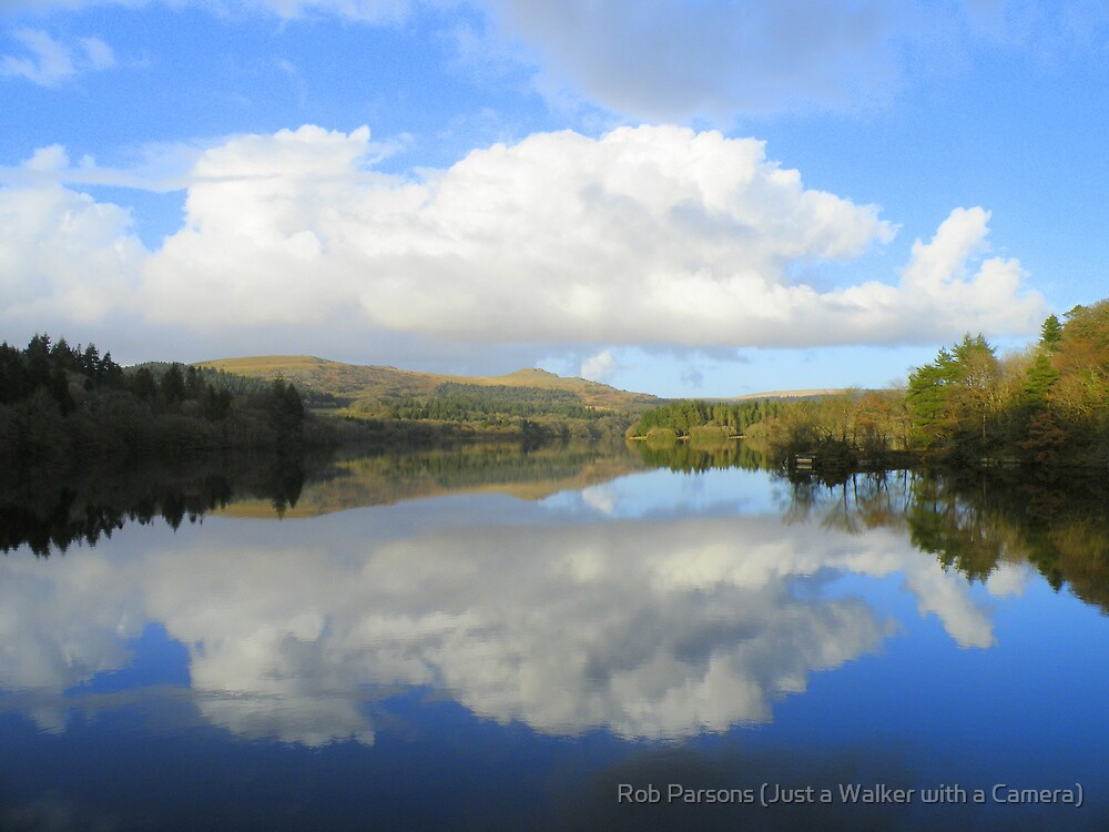Dartmoor: Burrator Reflections by Rob Parsons