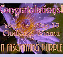 Banner : Top 10 Winner in A Fascinating Purple by Pieta Pieterse