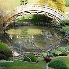 Second visit to Huntington Bot Garden by loiteke