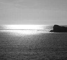 rocher du ion en noir et blanc by seccotine