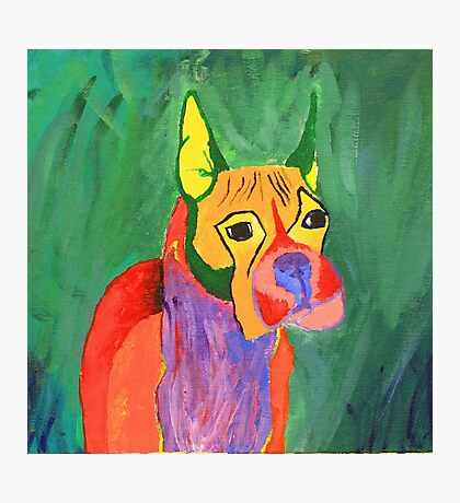 Boxer Dog Photographic Print