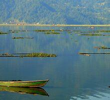Fisherman On Lake Phewa, Pokhara, Nepal by Breanna Stewart