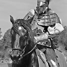 Knight and Horse by Debbie Pinard