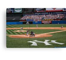 behind the plate Canvas Print