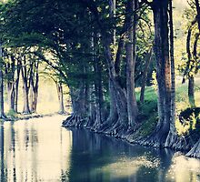 Guadalupe Crossing, Waring, Texas by Christina Macaluso Hammock