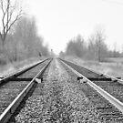 Selma Railroad tracks by mltrue