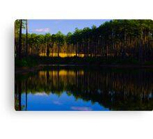 Blue Sky on Gated Community Pond Canvas Print