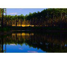 Blue Sky on Gated Community Pond Photographic Print