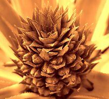 Otherworldly Pineapple by glennc70000