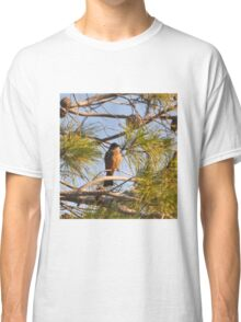 ROBIN IN A PINE TREE Classic T-Shirt