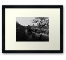 Reflections in the River Dart Framed Print