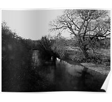 Reflections in the River Dart Poster