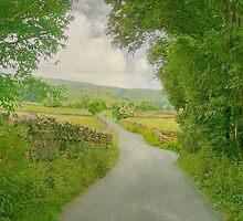 A  Lane in Wensleydale by patrixpix