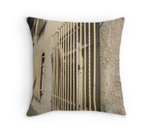 Untitled, Vilnius (2) Throw Pillow