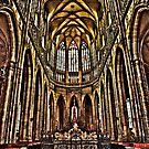 St. Vitus Cathedral, Prague by wilkor