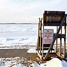 No Lifeguard On Duty by Madison Jacox