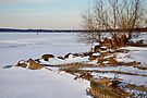 Lake Mendota in Winter by Madison Jacox