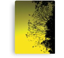 Morning Leaves Canvas Print