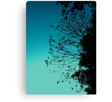 Turquoise Sky & Leaves Canvas Print