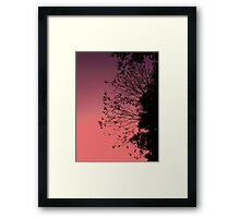 Sunset Leaves & Sky Framed Print