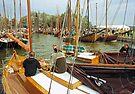 MVP37 Zees Boats, Althagen, Ahrenshoop, Germany. by David A. L. Davies