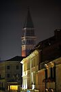 Campanile di San Marco by Robert Case