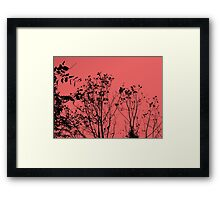 Three Trees Sunset Framed Print