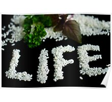Food of life Poster