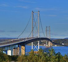 Forth Road Bridge  by Sandra Cockayne