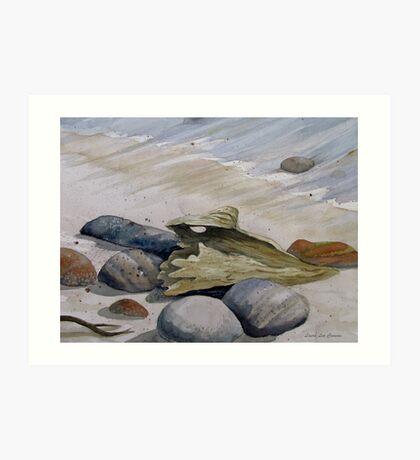 Beach stones and Driftwood Art Print