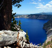 Crater Lake National Park by searchlight