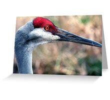 Floridian Crane Greeting Card