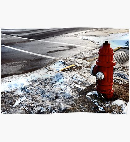 Frozen Fire-Hydrant Poster