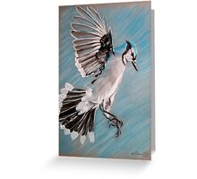 """Blue Jay"" Greeting Card"