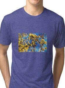 She Hid Around Corners Tri-blend T-Shirt