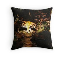 into the shadow Throw Pillow