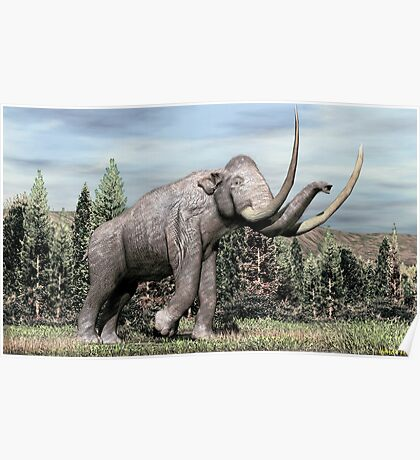 Columbian Mammoth (Mammuthus columbi) Poster