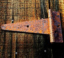 """Rusting Hinge on Barn Door"" BEST VIEWED LARGE by waddleudo"