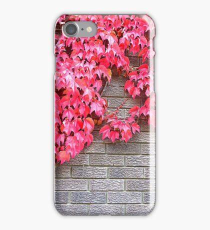Virginia Creeper On Brick iPhone Case/Skin